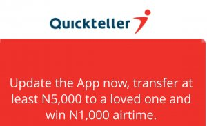 What You Should Know About Quickteller Mini