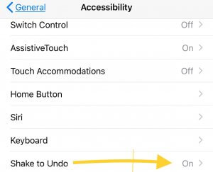 The use of shake to undo on iphone